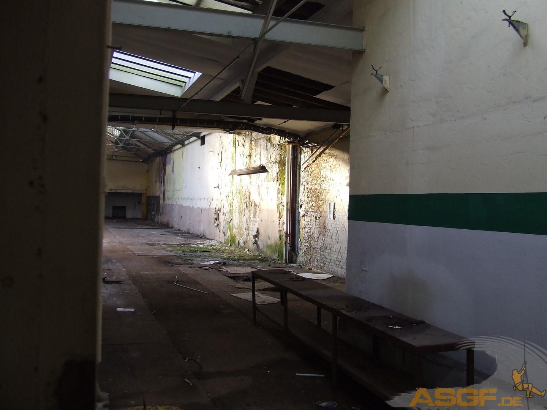 Dosenfabrik Heerdt-44