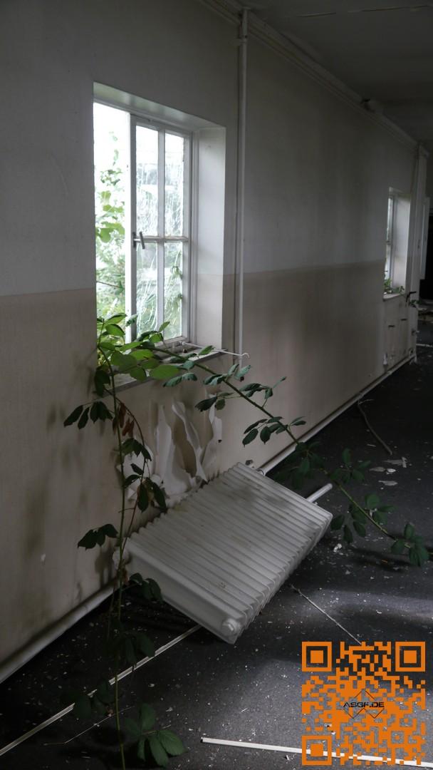 hospital2-17-09-16-09