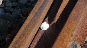 lostbahn-28-08-16-13