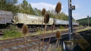lostbahn-28-08-16-16