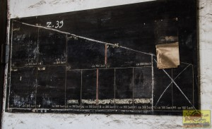 Senfkorn06