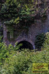 Klosterruine140819-1
