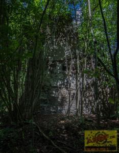 Klosterruine140819-10
