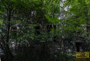 Klosterruine140819-13