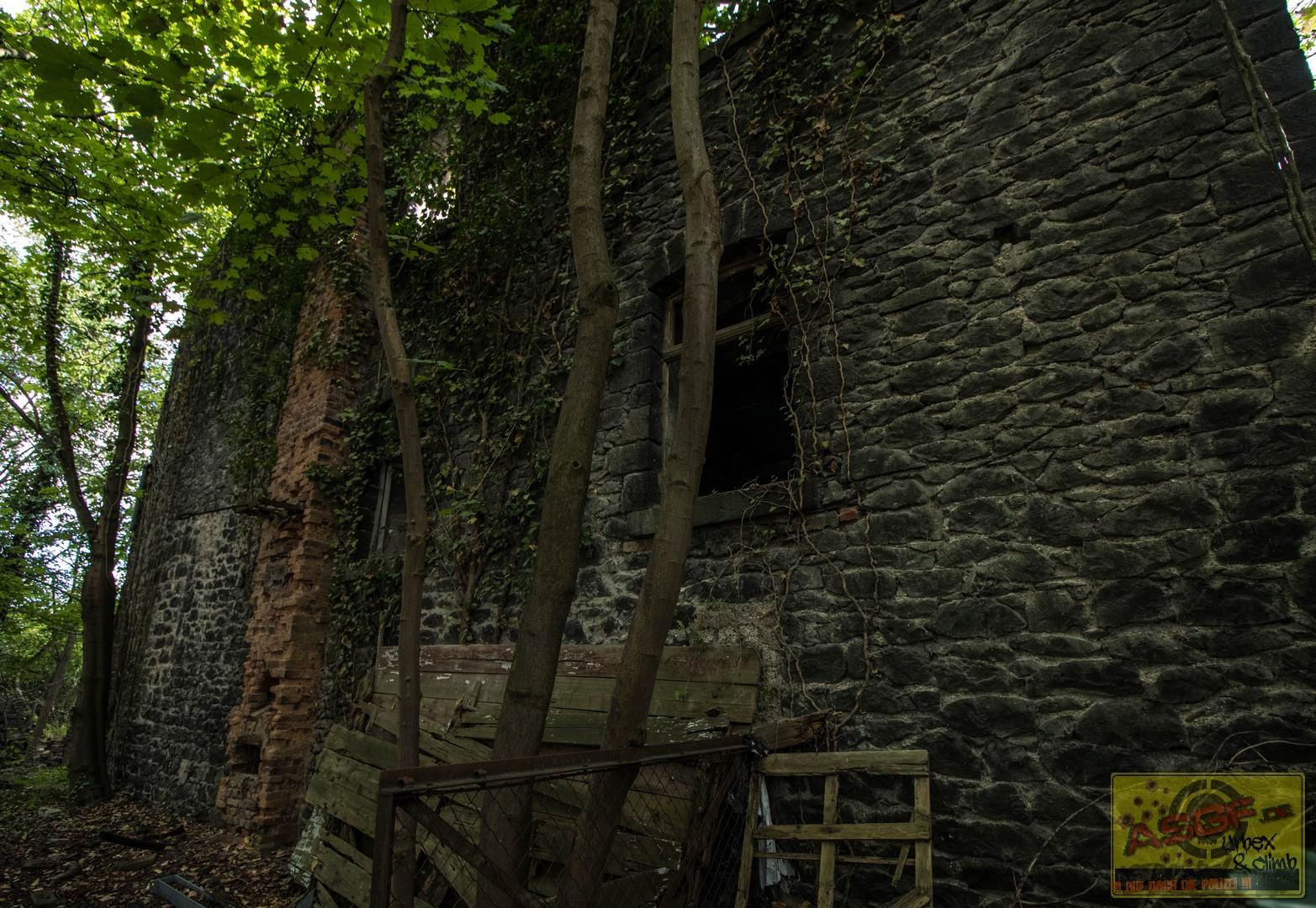 Klosterruine140819-14