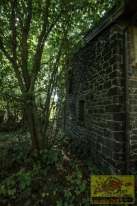 Klosterruine140819-16