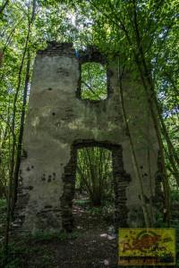 Klosterruine140819-5