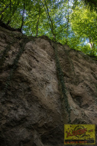 Trasshöhlen140819-6