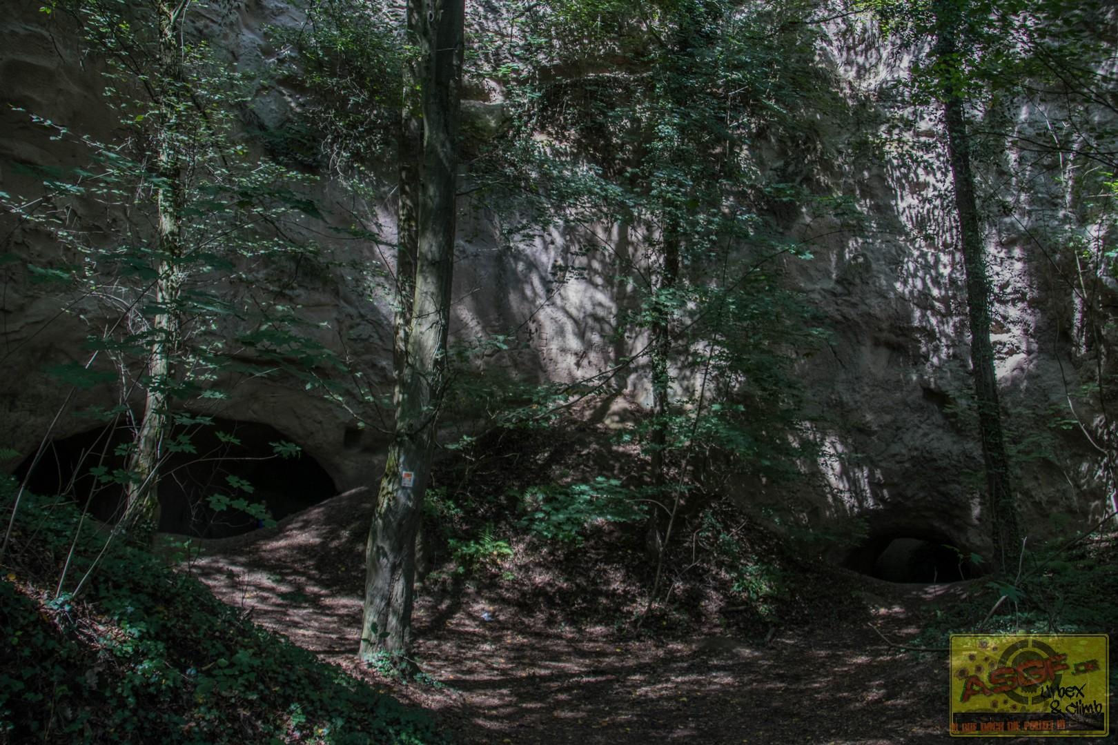 Trasshöhlen140819-8
