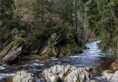 Wanderung an der Rur zum Gipfelkreuz Ehrensteinley
