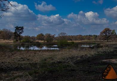 "Fotowanderung im Nationalpark ""De Meinweg"""