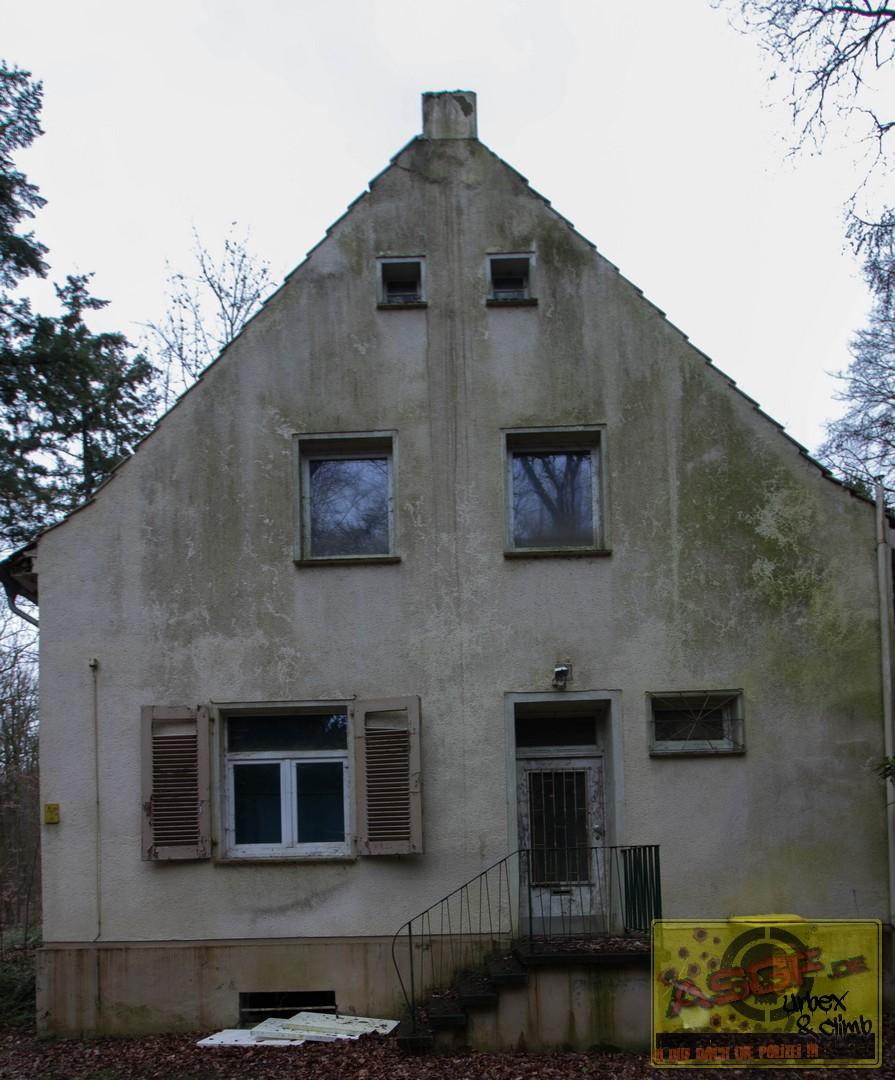 waldhaus-030319