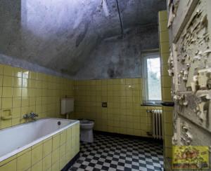waldhaus-030319_4
